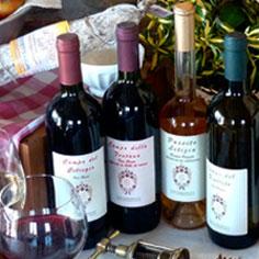 i vini piacentini di Locanda Fornace